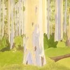 Blue Gum Forrest, Blue Mountains acrylic paper 1987