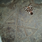 Butterfly decorated stone, Ness of Brodgar