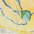 Notebook Cabbage Tree Creek 29,5,95 copy